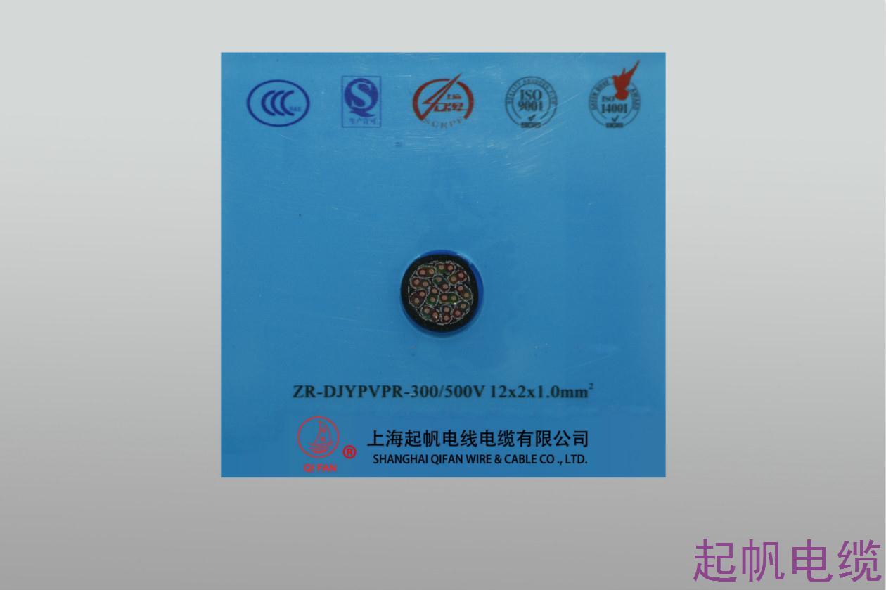 计算机电缆ZR-DJYPVPR-300 500V 12X2X1.0